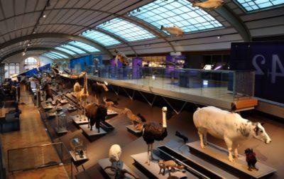 Museo Nacional de Ciencias Naturales Madrid