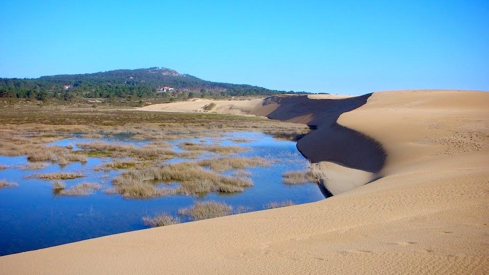 Resultado de imagen de duna móvil de Corrubedo