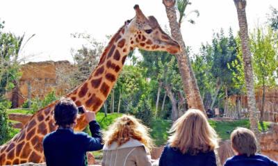 zoo de jerez