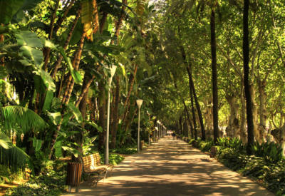 paseo del parque málaga