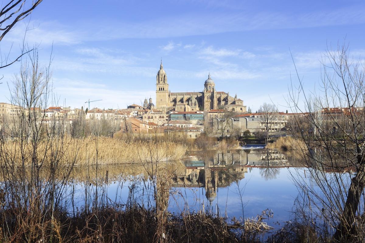 Vista de la catedral de salamanca