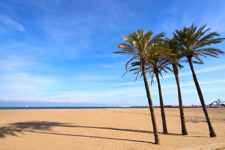 arena playa malvarrosa