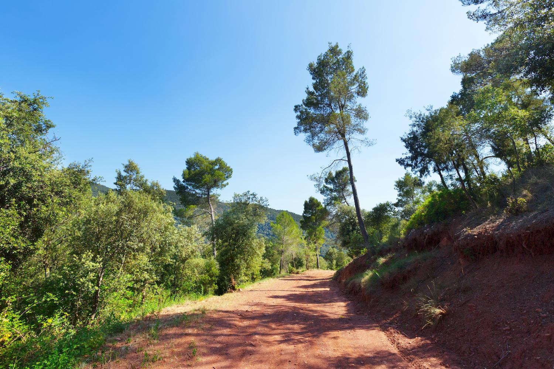 Camino del Montseny