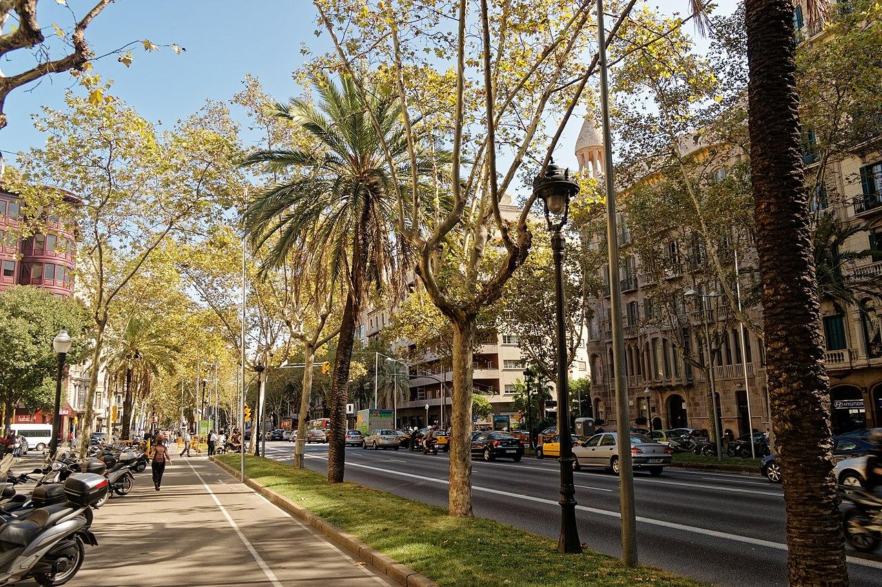 paseo en avenida diagonal